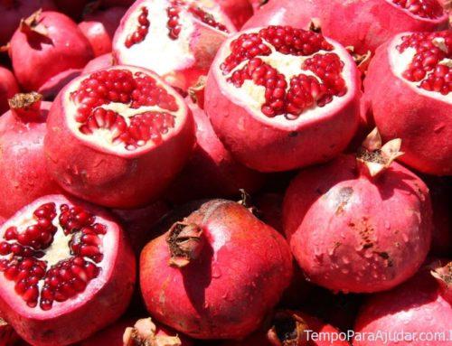 Comendo na Turquia: conheça a gastronomia turca