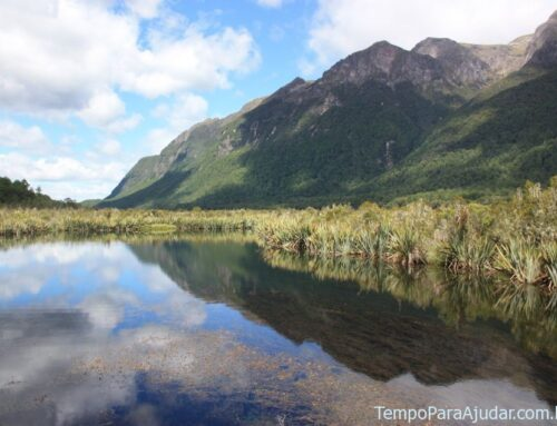 Nova Zelândia: um paraíso para atividades na natureza