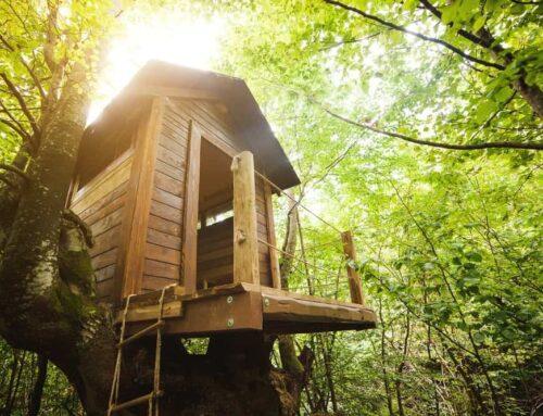 Que tal se hospedar em uma casa na árvore?