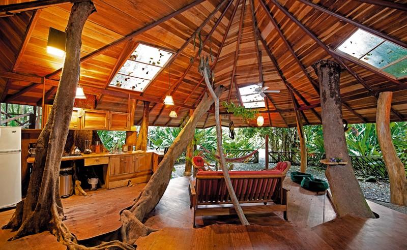 Tree House Lodge - foto site do hotel