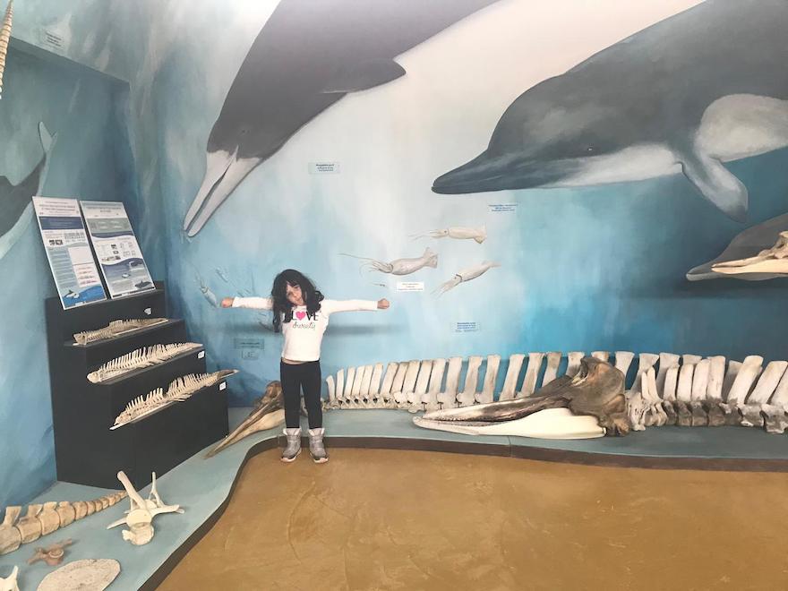 Museu para crianças em Ushuaia